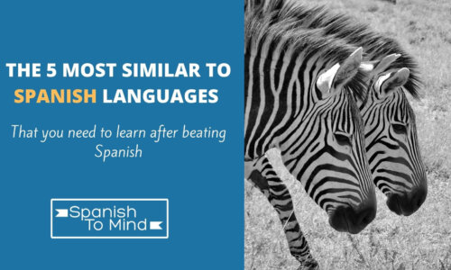 The 5 Most Similar To Spanish Languages That You Need To Learn After Beating Spanish