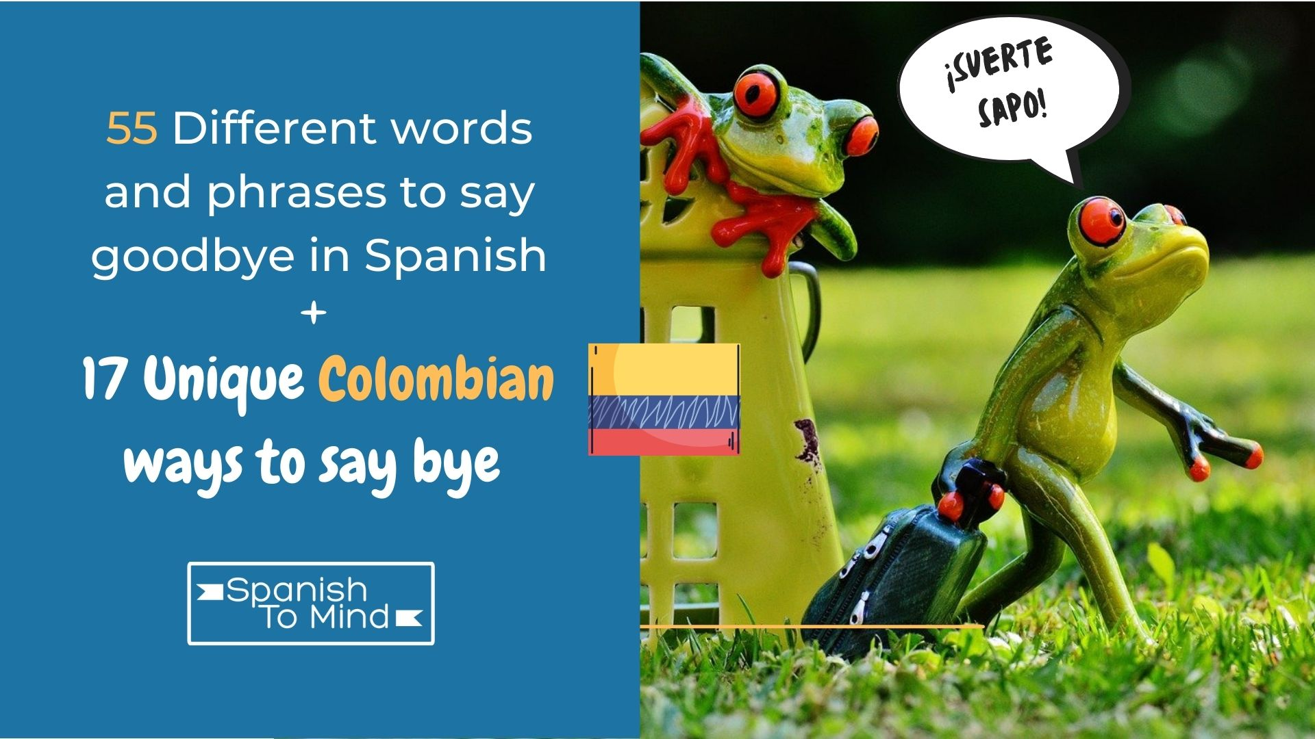 Frog leaving and saying goodbye in Spanish